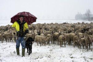 Foto di Vittorio Giannella, Paesaggio Agricolo